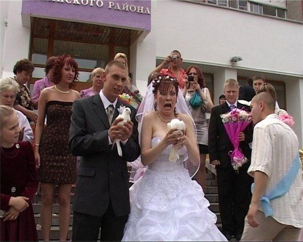 Смешные случаи на свадьбе